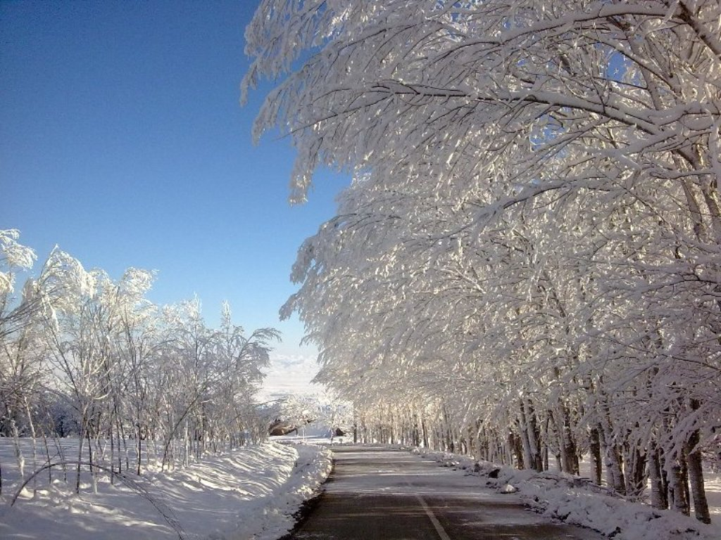 عکس طبیعت زمستان